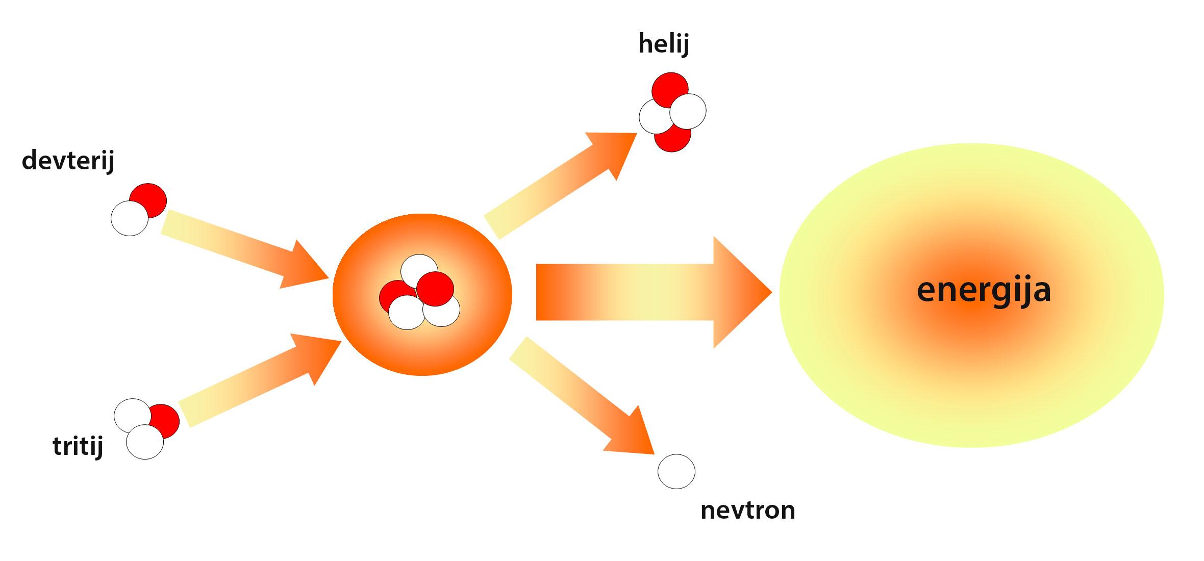 shema fuzija